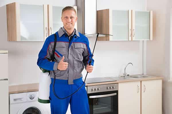 Photo of a Gold Coast Pest Control technician