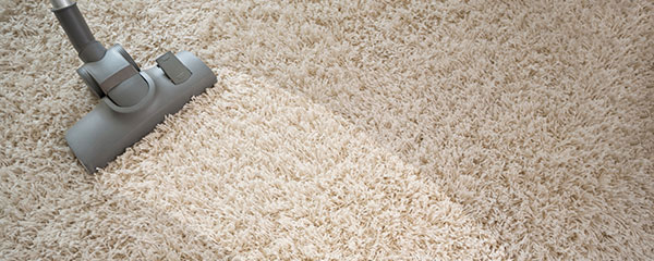 Our Professional Carpet Cleaning Brisbane Services are second to none!