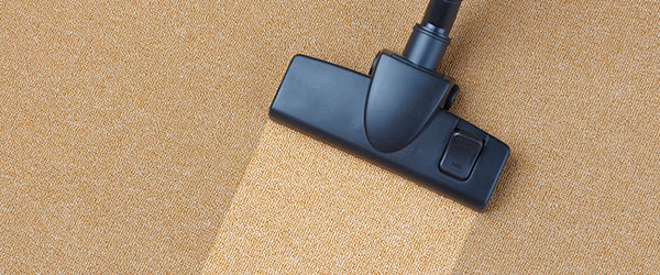 Results of experienced Carpet Cleaning Logan company